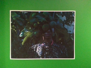 SELFPORTRAIT Ficus Carica - Zora Opoku